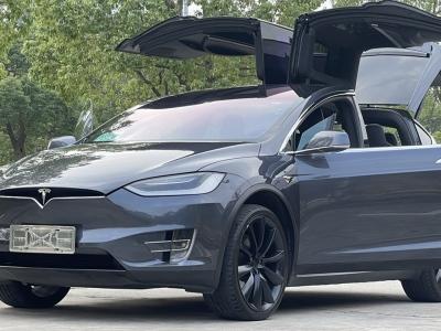 2017年09月 特斯拉 Model X  Model X 100D 长续航版图片