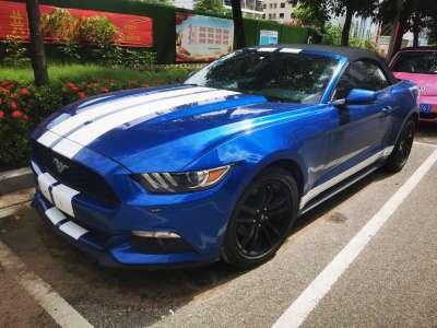 福特 Mustang  2020款 2.3L EcoBoost 黑曜魅影特別版圖片
